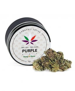 purple_hempstore