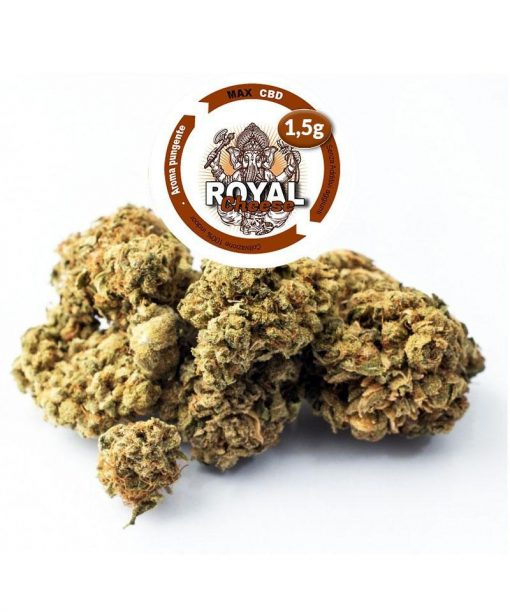 royal-cheese-cbd-30 _1gr