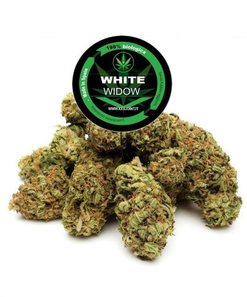 xxxjoint_whitewidow