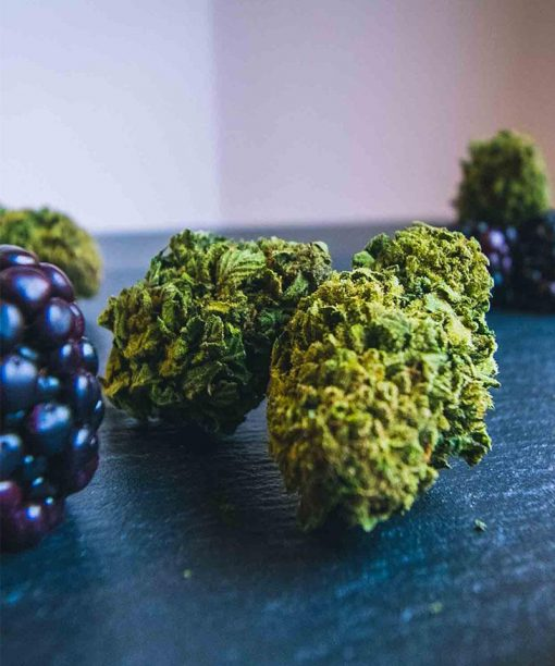blueberry cbweed 2gr cannabis legale