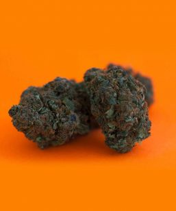 orange bud cbweed cannabis legale