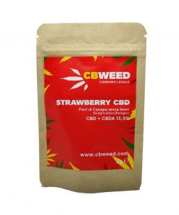 strawberry cbweed 2gr erba legale