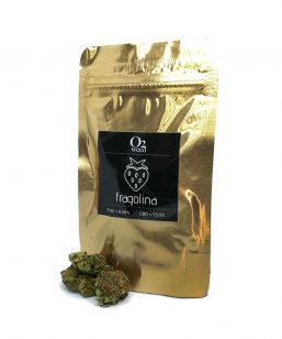 zero2weed fragolina cannabis light