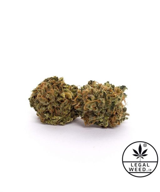 bluespace legalweed