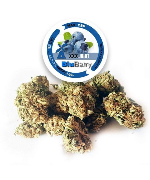 xxxjoint blueberry-cbd-26
