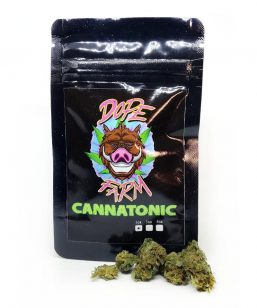 cannatonic dopefarm