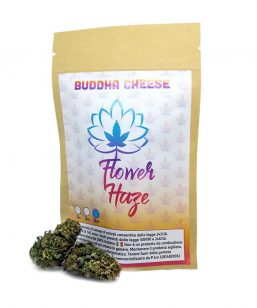 weedly budda cheese